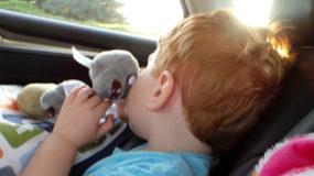 bambino che dorme in macchina