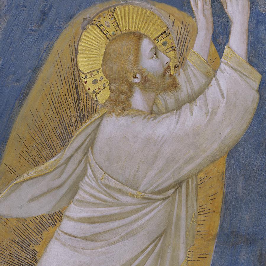 immagine - Giotto - dettaglio